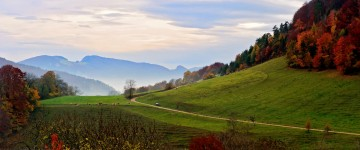 Swiss Country Road