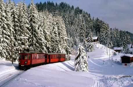 Swiss Train Jigsaw Puzzle
