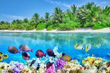 Thoddoo Island