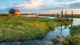 Thornham Marshes
