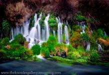 Thousand Springs