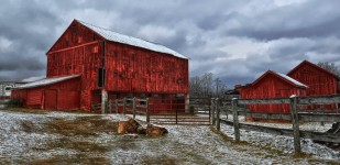 Three Red Barns