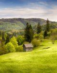 Transylvania Shed
