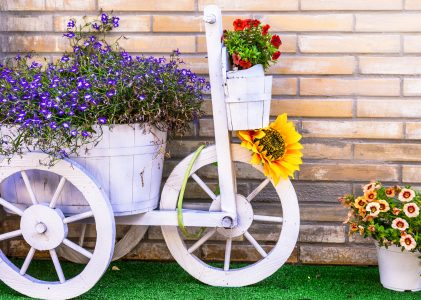 Tricycle and Flowers Jigsaw Puzzle