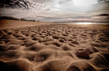 Trodden Beach Jigsaw Puzzle