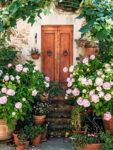 Tuscany Doors