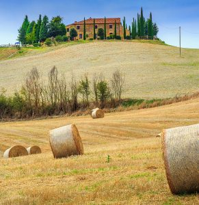 Tuscany Hay Bales Jigsaw Puzzle