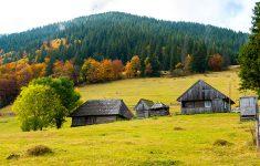 Ukrainian Farm