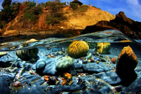 Under the Surf Jigsaw Puzzle
