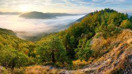Valley of Fog