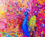 Vivid Peacock