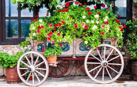 Wagon Garden Jigsaw Puzzle
