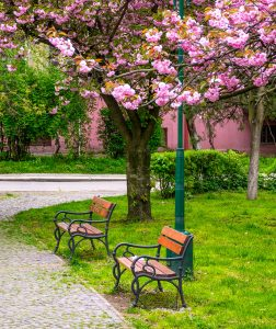 Waiting Benches Jigsaw Puzzle