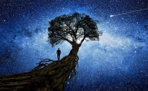Walking to the Stars Jigsaw Puzzle