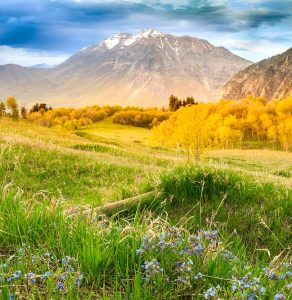 Wasatch Mountains Jigsaw Puzzle