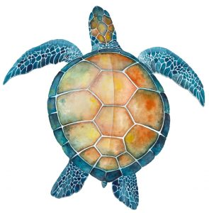 Watercolor Turtle Jigsaw Puzzle