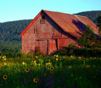 Weathered Barn Jigsaw Puzzle