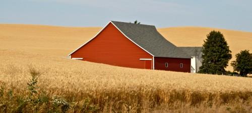 Wheat Field Jigsaw Puzzle