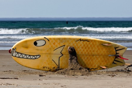 Whimsical Surfboard Jigsaw Puzzle