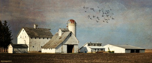 White Farm Jigsaw Puzzle