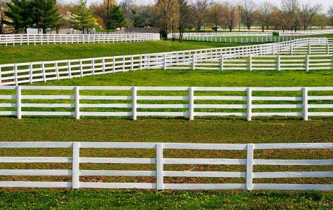 White Fences Jigsaw Puzzle
