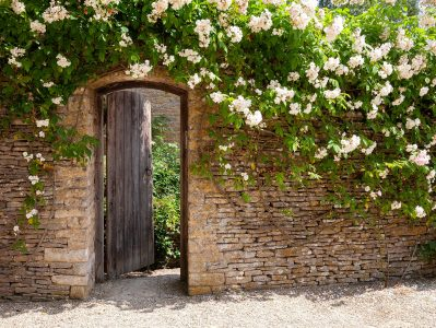 White Flowered Gate Jigsaw Puzzle