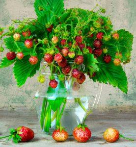 Wild Strawberries Jigsaw Puzzle