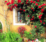 Window and Roses Jigsaw Puzzle