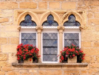 Window Flowers Jigsaw Puzzle