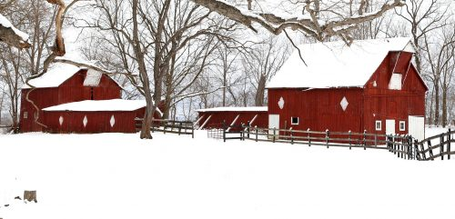 Winter Barns Jigsaw Puzzle