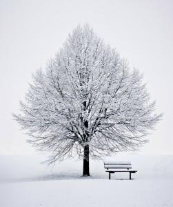 Winter Meditation Jigsaw Puzzle