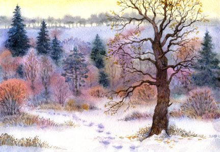 Winter Oak Jigsaw Puzzle
