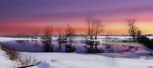 Winter Pond Jigsaw Puzzle