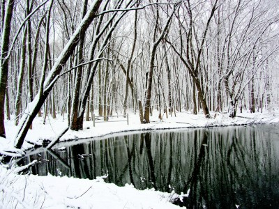 Winter Reflection Jigsaw Puzzle
