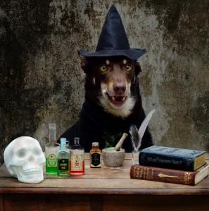 Witch's Brew Jigsaw Puzzle