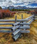Wood Pole Fence