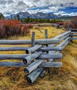Wood Pole Fence Jigsaw Puzzle