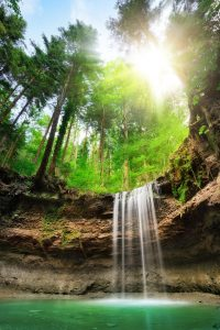 Woodlands Waterfall Jigsaw Puzzle