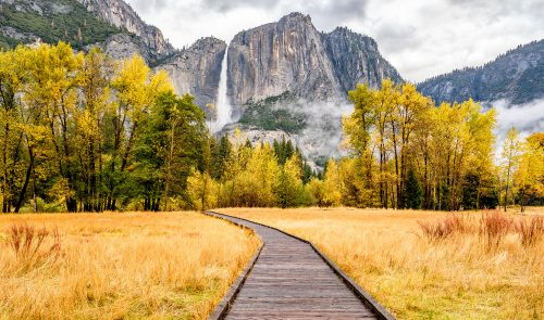 Yosemite Boardwalk Jigsaw Puzzle