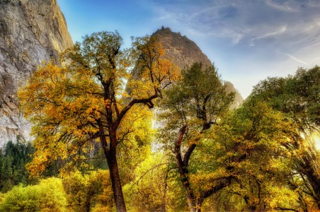 Yosemite Fall Jigsaw Puzzle